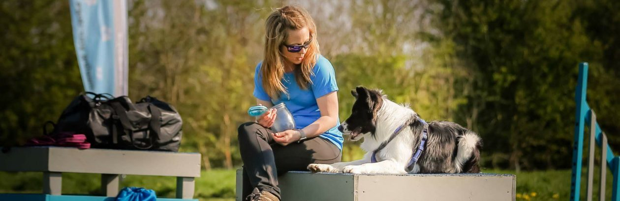 On The Ball Dog Care & Training